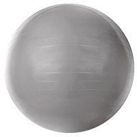 Bola de Ginástica Gym Ball 55cm Acte